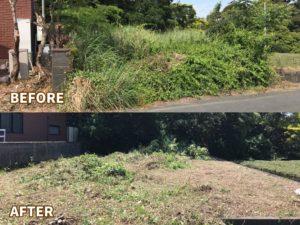 【磐田市】空き地の草刈りと伐採