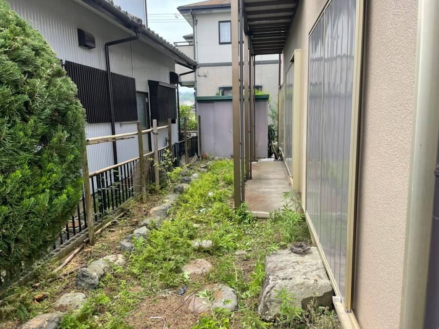 家の側面の木伐採後