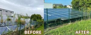 磐田市の極狭太陽光ソーラーの敷地草刈りビフォーアフター