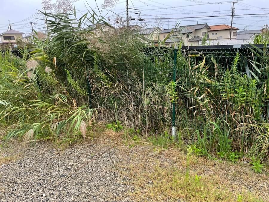 磐田市の極狭太陽光パネルの敷地草刈り作業前